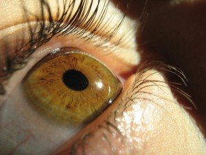 Восстановление сетчатки глаза стволовыми клетками в россии
