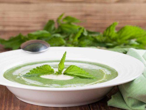 Питательный крапивный суп